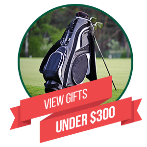 View Gifts Under $300