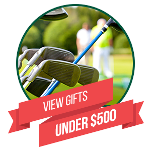View Gifts Under $500